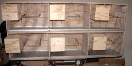 Kandang Ebod Kosan By Chan Kicau cara membuat sangkar burung susun mudah dan praktis