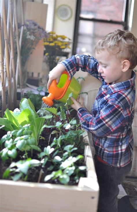 indoor gardening kits vegetables indoor gardening for city gimme the stuff