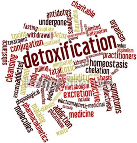Look Out For Detox 320 by Fabila S Fitness Club Detoxification And Its Benefits