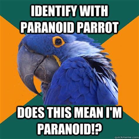 Paranoid Parrot Meme - identify with paranoid parrot does this mean i m paranoid