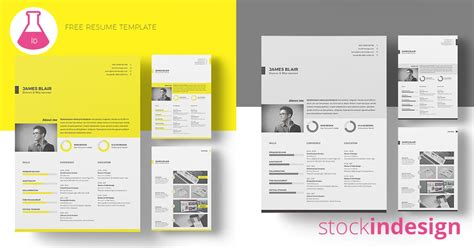 Free Resume Template Free Indesign Templates Free Indesign Resume Template