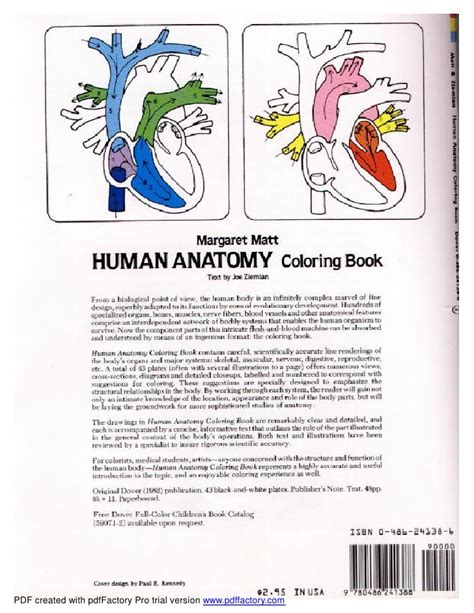 musculoskeletal anatomy coloring book free musculoskeletal anatomy coloring book dover the anatomy