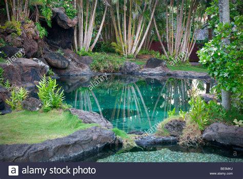 botanical gardens kauai pond and garden at na aina botanical gardens kauai