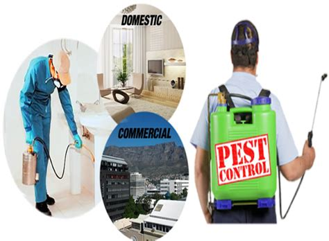 global fumigation services