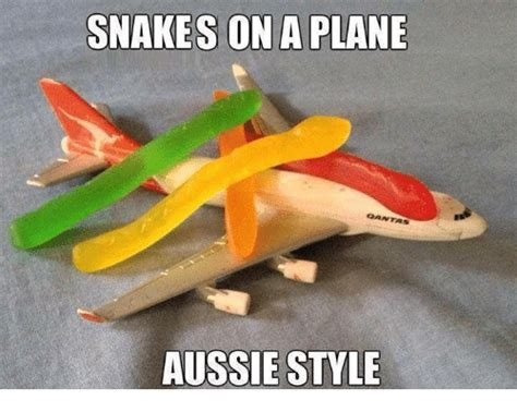 Snakes On A Plane Meme - 25 best memes about snakes on a plane snakes on a plane