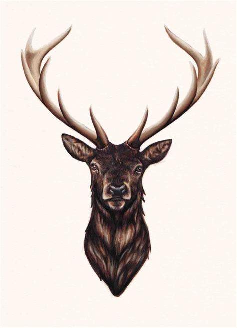 full body deer tattoo stag original drawing peter carrington illustration