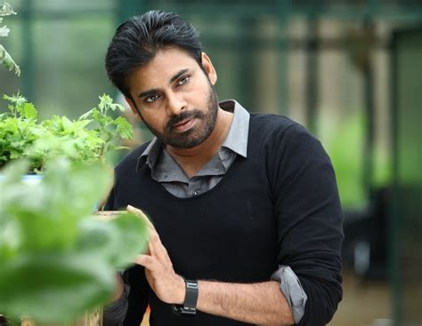 pawan kalyan telugu actor pawan kalyan kids son akira nandan daughter