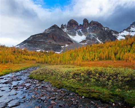 autumn beautiful scenery stones mountains trees stream