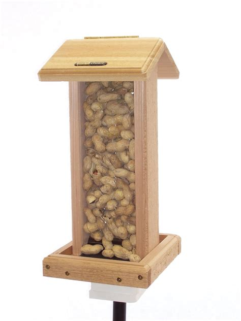 amazon com birds choice whole peanut blue jay feeder