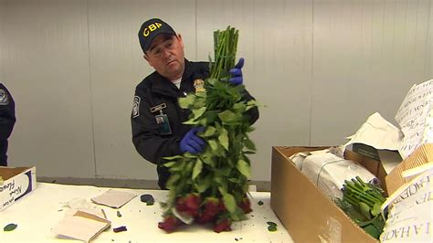 deadlocks sevice in miami see how cbp agents ensure bug free valentine s bouquets