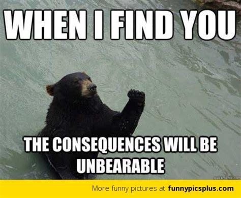 Revenge Memes - revenge bear meme funny pictures