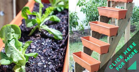 How To Make Vertical Garden Planters How To Make Vertical Planter Garden Diy Crafts
