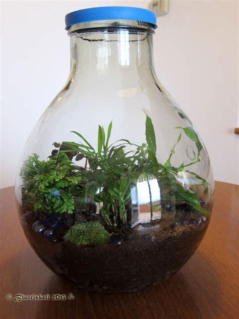 giardini in bottiglia il giardino in bottiglia blutriskell il di cris