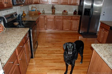 Hardwood Kitchen Floor Kitchens With Wood Floors