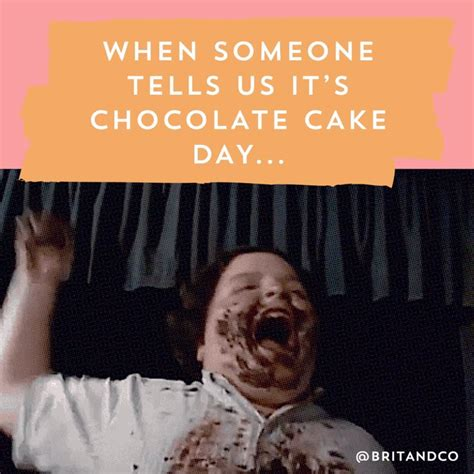 Chocolate Cake Meme - the ultimate dessert to celebrate chocolate cake day