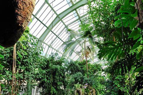 grandes serres du jardin des plantes mus 233 um national d