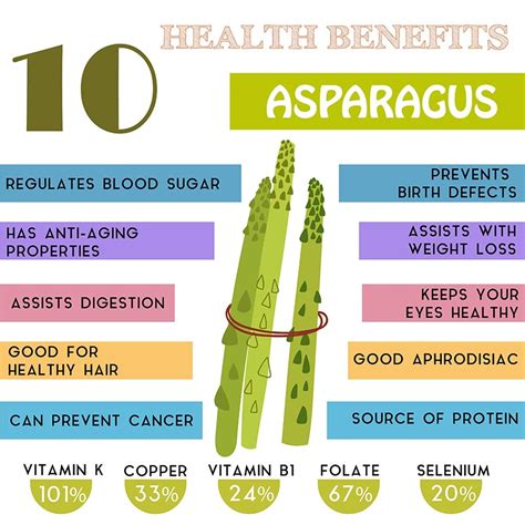 is asparagus for dogs asparagus for dogs can dogs eat asparagus benefits and dangers
