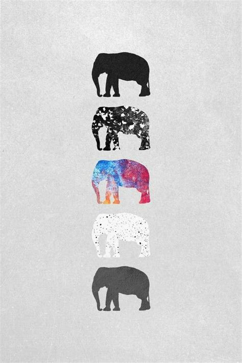 girly elephant wallpaper fondos de pantallla tumblr