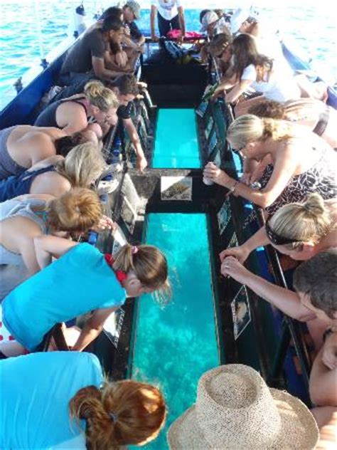 glass bottom boat tours grand cayman cayman glass bottom boat seven mile beach all you need