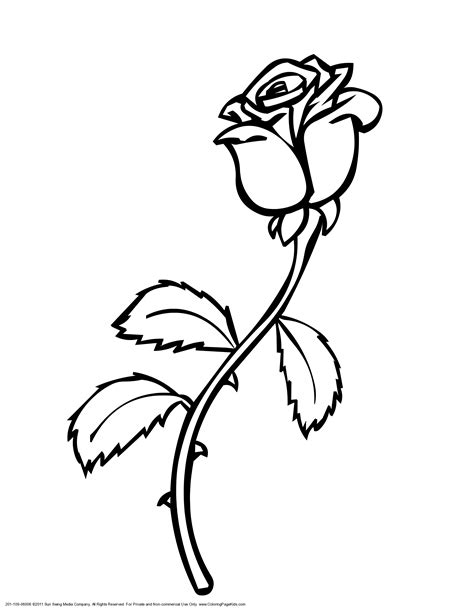 flower page printable coloring sheets print