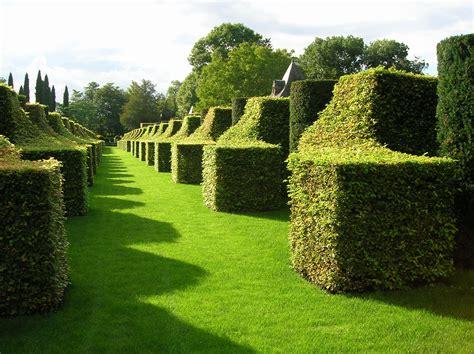 world famous gardens gratis afbeeldingen landschap boom natuur gras