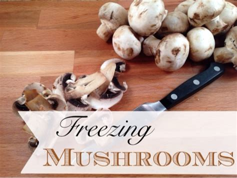 freezing mushrooms frugally blonde
