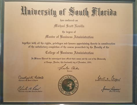 Usf Mba International Student by My Timeline Michael S Novilla