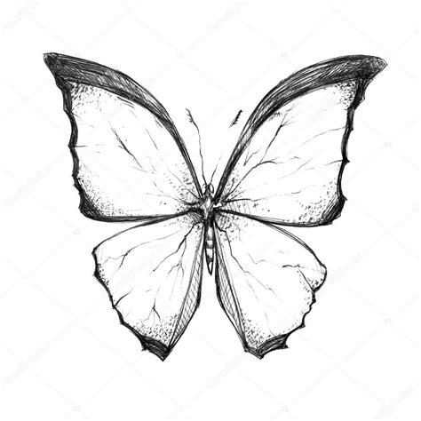 imagenes de mariposas en negro zeer mooie zwart wit vlinder stockfoto 169 inxanta 112842174