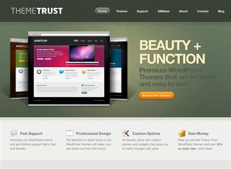wp template 10 places to buy professionally designed themes