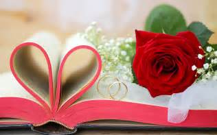 Red flowers roses valentine s day book love hearts rings 2560x1600