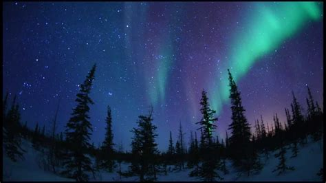 Christmas Scene Wall Murals starscape and northern lights time lapse from churchill