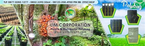 Polybag Ukuran 40 X 40 pabrik dan distributor polybag jual polybag kw dan