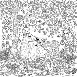 secret garden coloring book store deer forest coloring page digital by crista forest