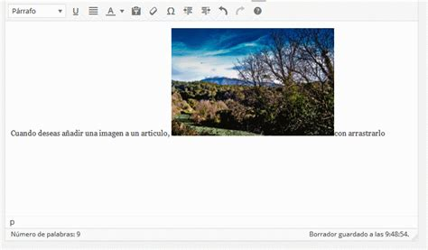 imagenes animadas wordpress wordpress subiendo im 225 genes y masrecursos para formacion