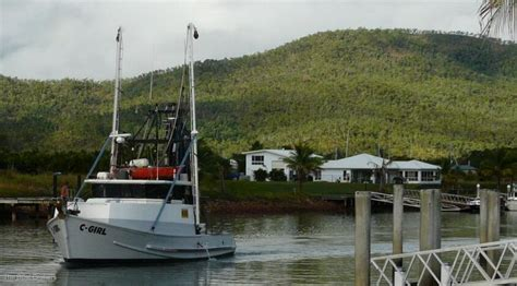 fishing boats for sale cairns prawn trawler commercial vessel boats online for sale