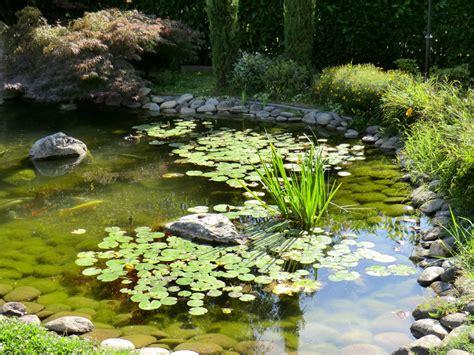 Super Fiori Di Primavera Da Giardino #1: Laghetti-artificiali-5.jpg