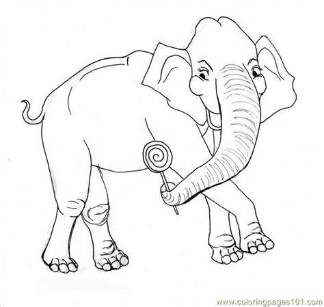 elephant coloring pages pdf coloring pages elephant coloring page animals gt elephant