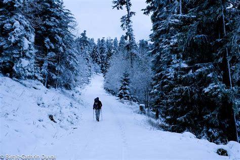 Hütte Im Winter Mieten by Westweg Winter Wanderung Etappe 2 Dobel Forbach