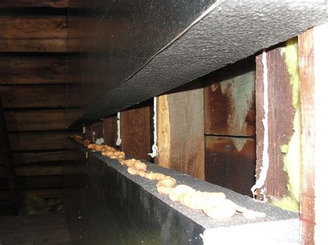 Attic Insulation in Virginia Beach, Norfolk, Newport News