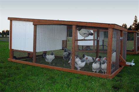 Mobile Chicken Shed why choose a mobile chicken coop chicken coop how to