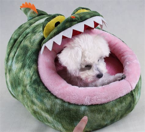 cute dog bed funny pictures funny cat sleeping in a garden dog breeds