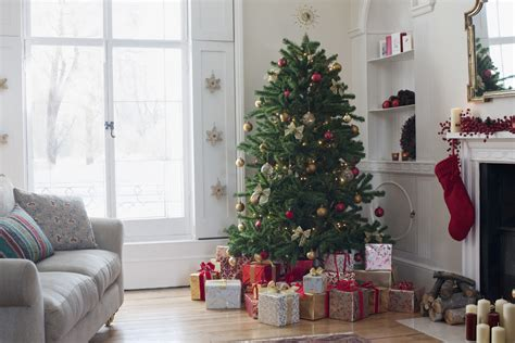 how to keep a christmas tree alive how to keep a