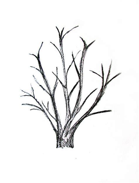 tree to draw how to draw a tree