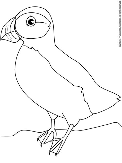 puffin bird coloring page puffin audio stories for kids free coloring pages from