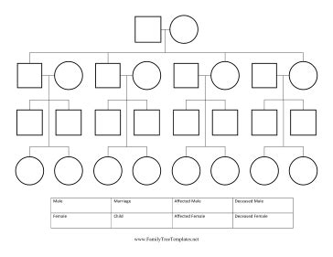 Blank Family Tree Diagram Blank Free Engine Image For User Manual Download A Pedigree Diagram A Free Engine Image For User Manual
