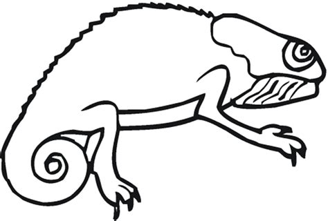 lizard coloring pages to print reptile coloring part 2