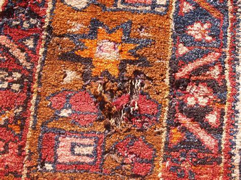 wool moths in rugs rug master rug moth damage