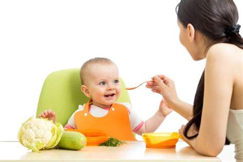 alimentos bebes 6 meses como alimentar o beb 234 de 6 meses tua sa 250 de