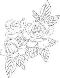 simple rose bush drawing google search rose coloring