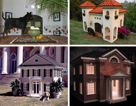 most amazing dog houses top 70 most amazing houses from around the world urbanist